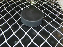 Arena Safety Netting -  Pre-Cut Sizes